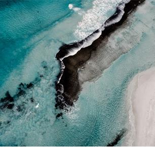 科学研究表明美丽诺羊毛将成为解决全球塑料问题的有效方案之一