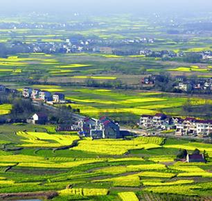 望江县纺织服装特色产业集群(基地)被批准为安徽省县域特色产业集群(基地)