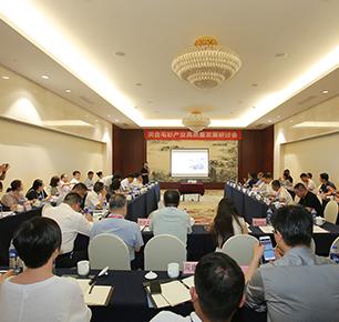构建毛衫产业发展新格局 ——《洪合毛针织产业发展规划(2019-2023)》通过专家论证